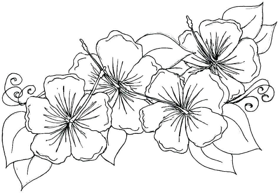 Flowers in May Coloring Page
