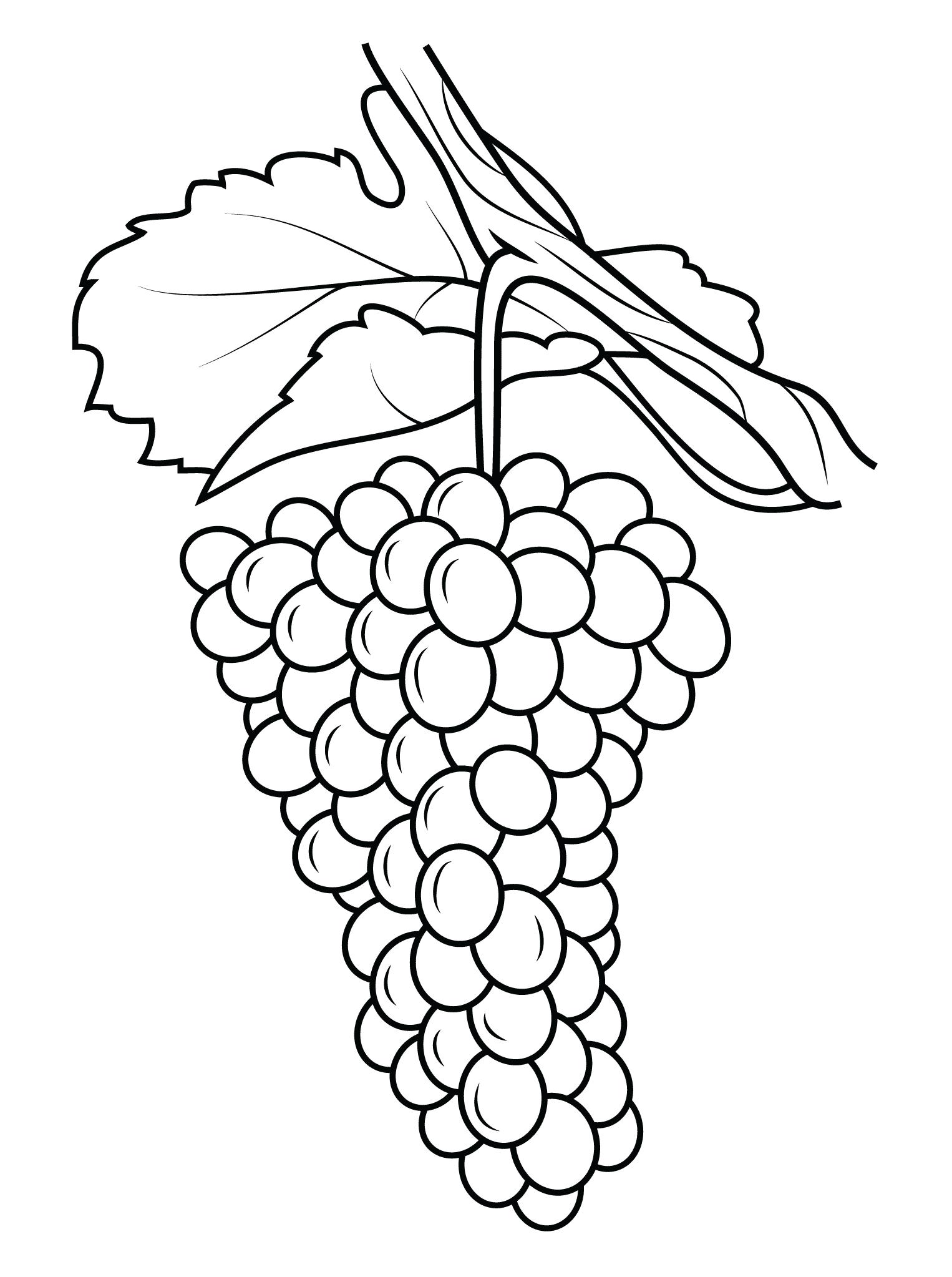 Картинка виноград для детей раскраска, февраля мужчине