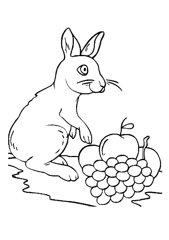 Grapes Printable Coloring Pages