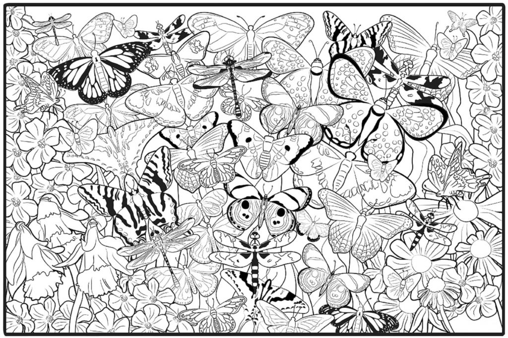 Hard Butterfly Coloring Pages for Adults