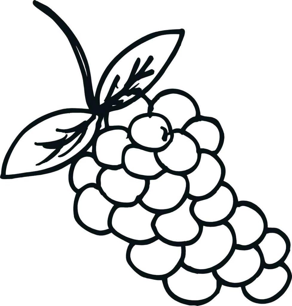 Print Grapes Coloring Page