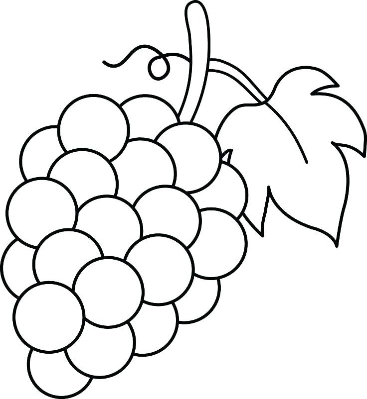 Print Grapes Coloring Pages