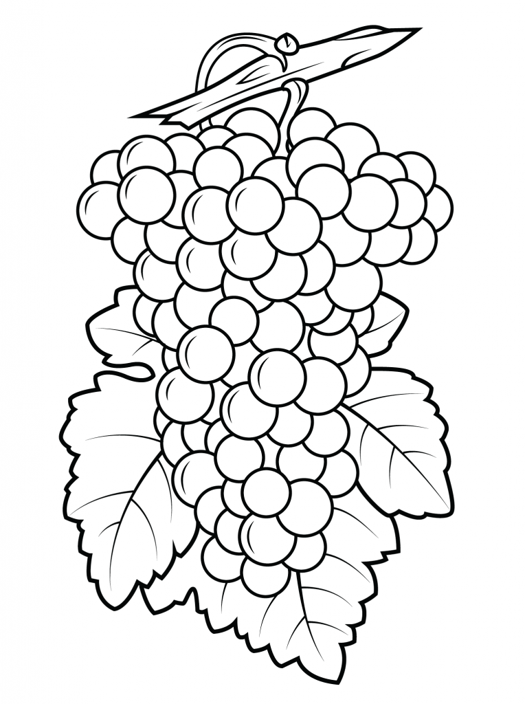 Printable Grapes Coloring Pages
