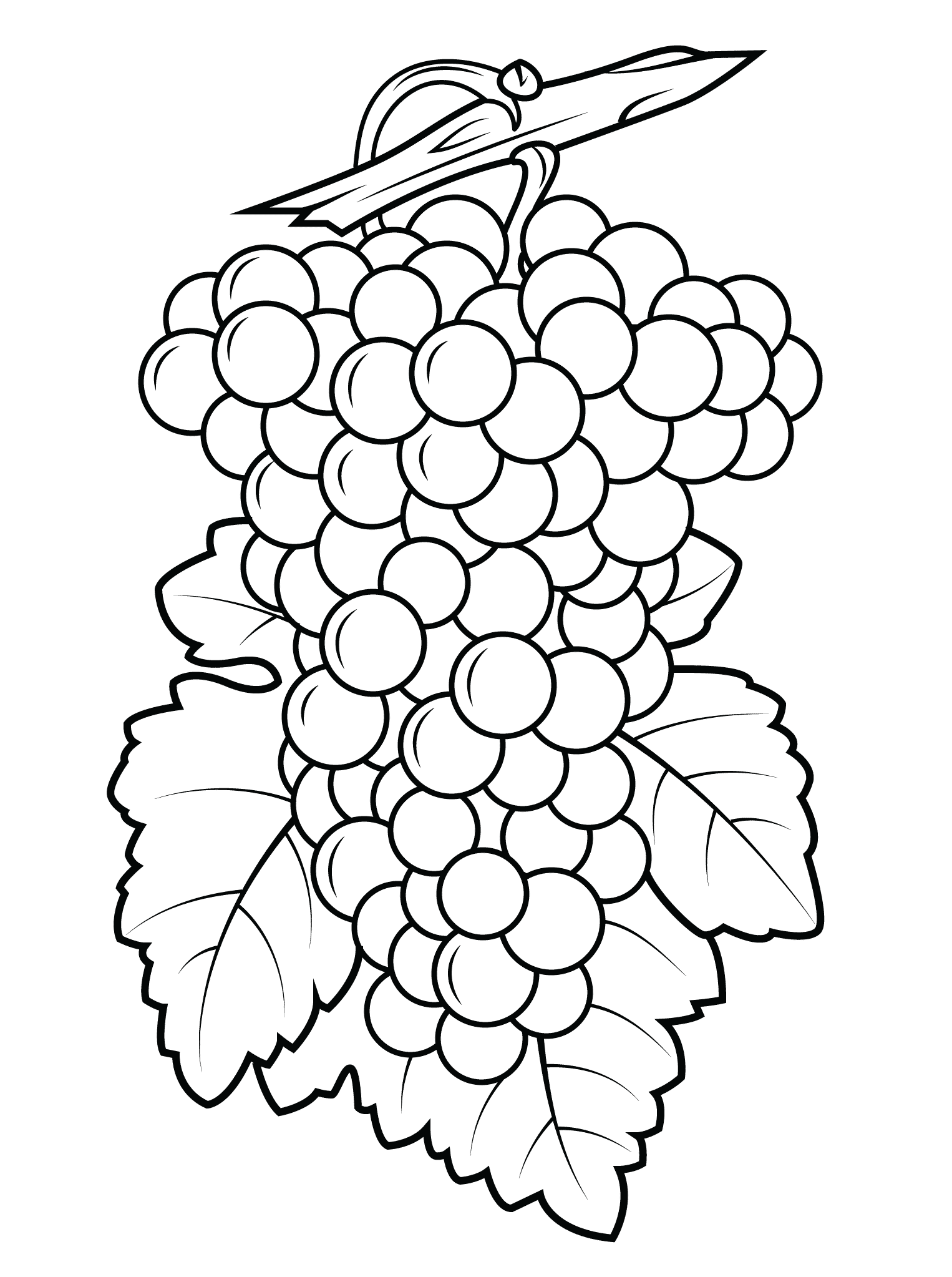 Grapes Coloring Pages Best Coloring