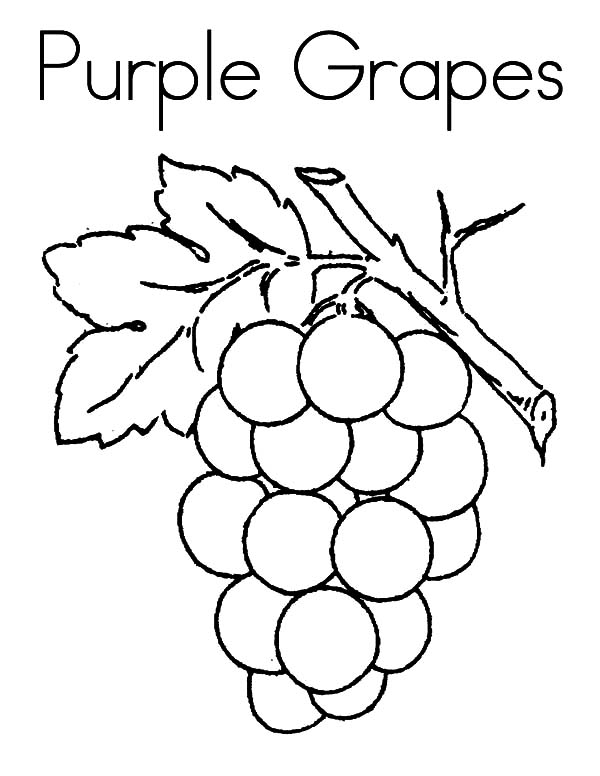 Coloring Pages | Grapes Coloring Page for Kids | 776x600
