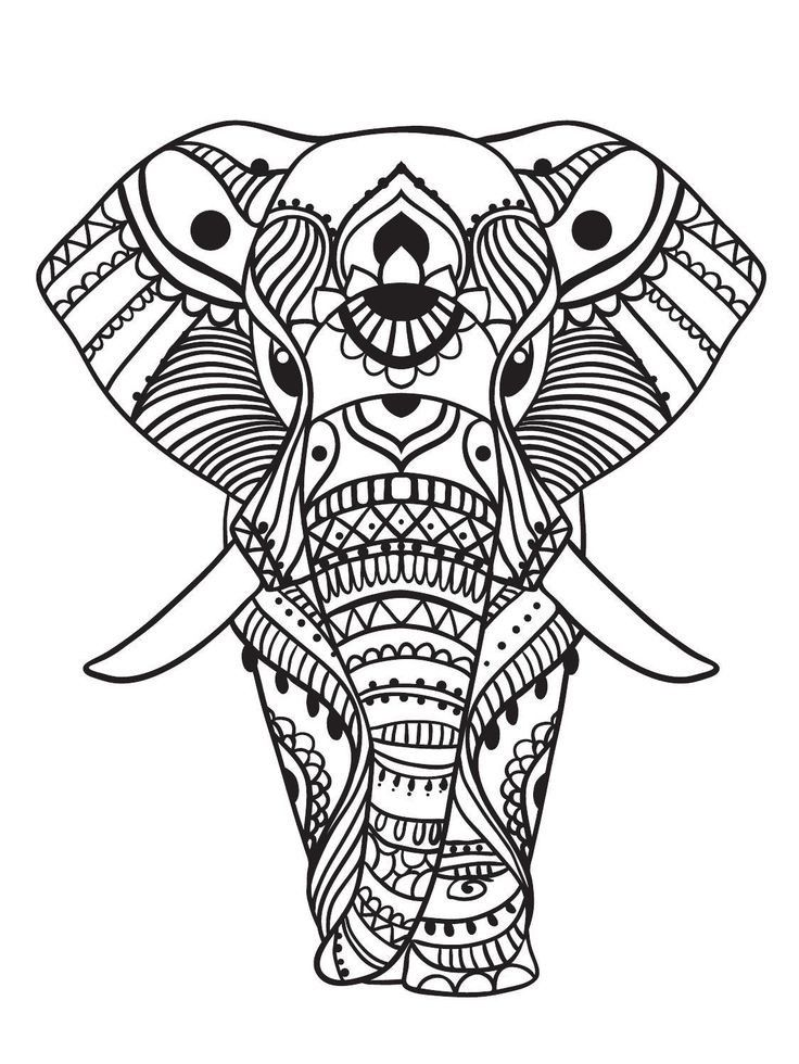 Zen Adult Coloring Elephant
