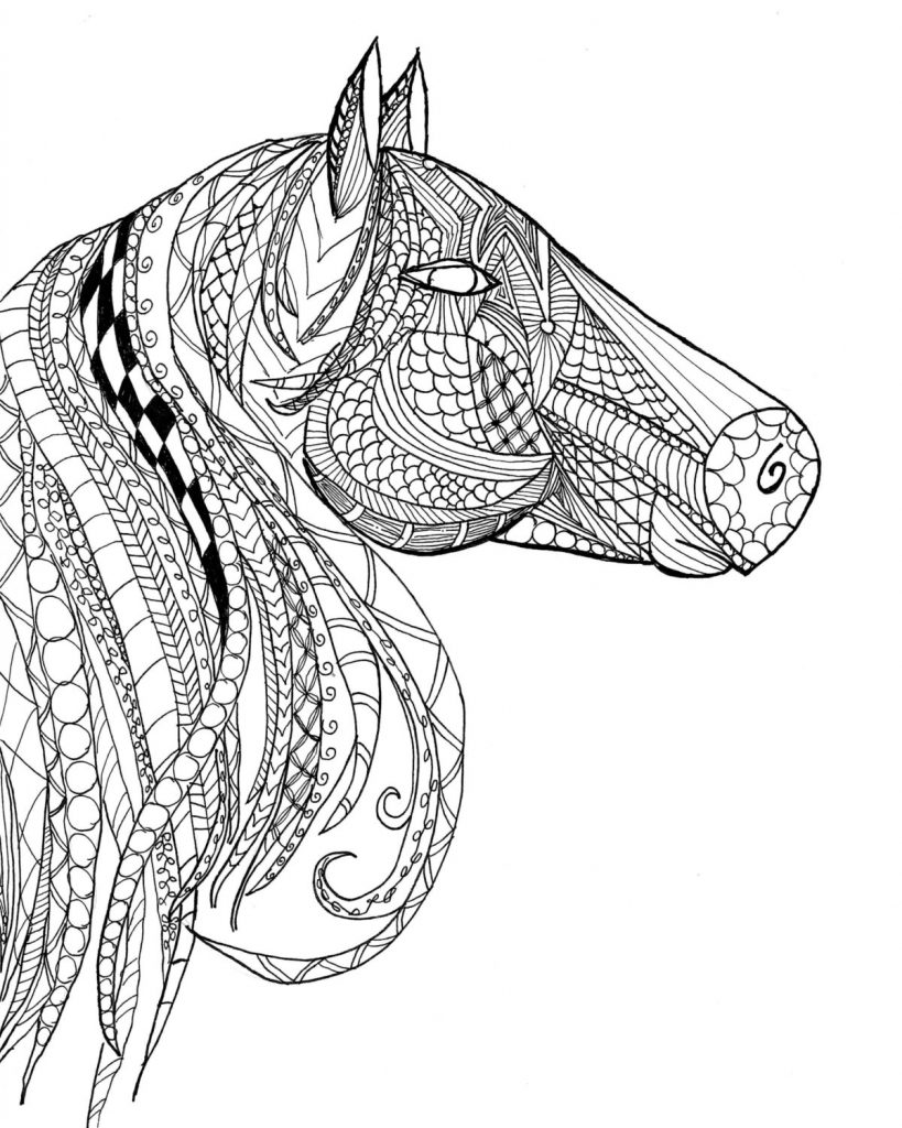 Detailed Horse Head Coloring Pages for Adults