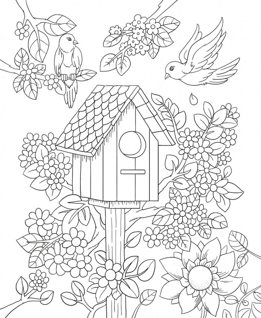 Floral Birdhouse Coloring Pages For Adults