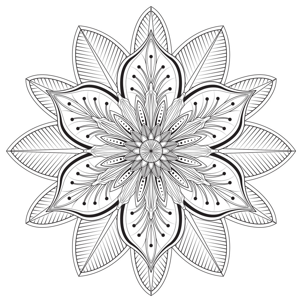 Floral Pattern Coloring Page For Adults