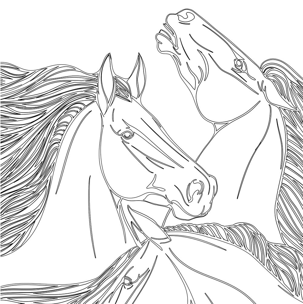 Printable Horses Coloring Page for Adults