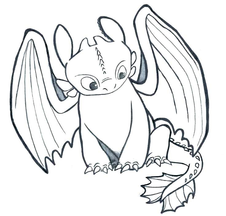 Printable Toothless Coloring Pages