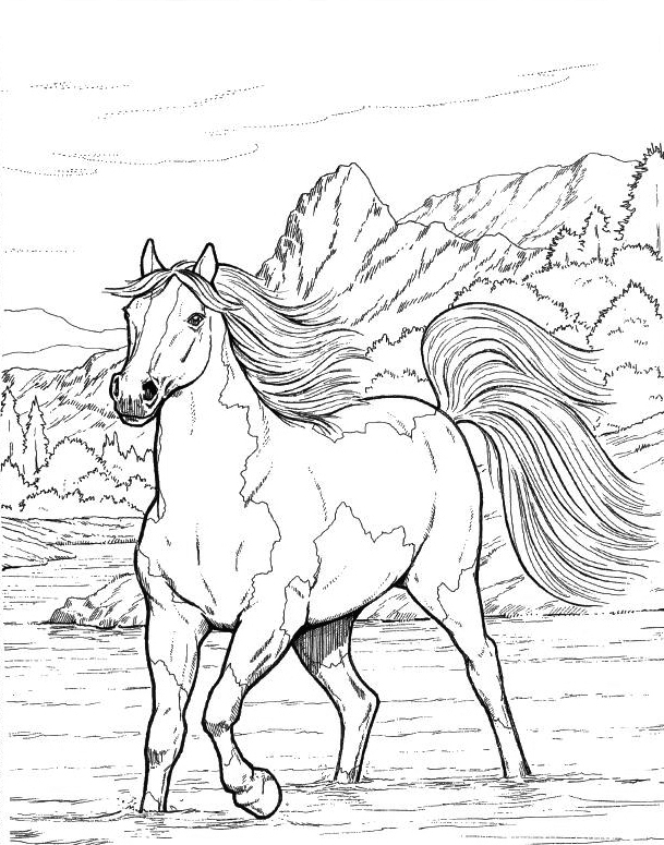 Realistic Printable Horse Coloring Pages for Adults