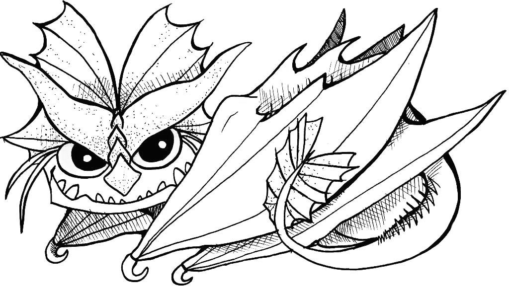 Toothless Printable Coloring Pages