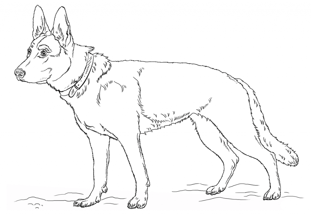 Cute German Shepherd Coloring Pages
