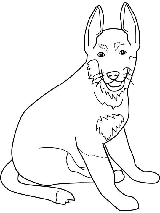 Dog German Shepherd Coloring Pages