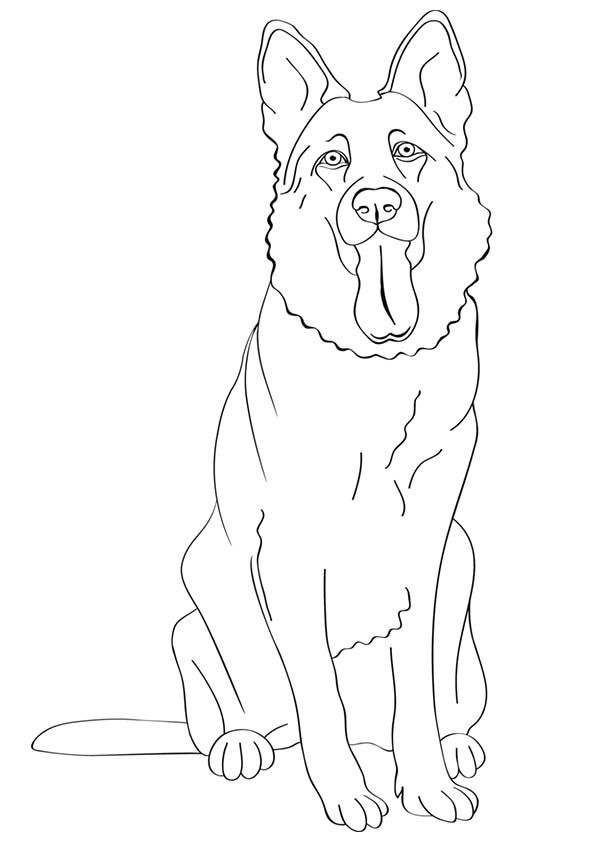 German Shepherd Coloring Pages Outline