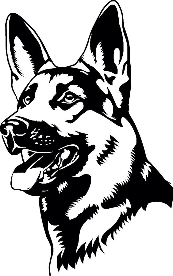 German Shepherd Line Art Drawing to Color
