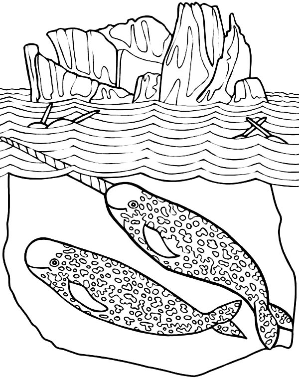 Narwhal Sea Scene Coloring Page