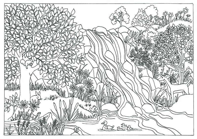 Waterfall Landscape Scene Coloring Page