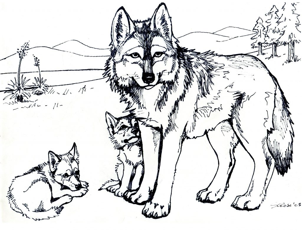 Wolf and Cubs Coloring Page