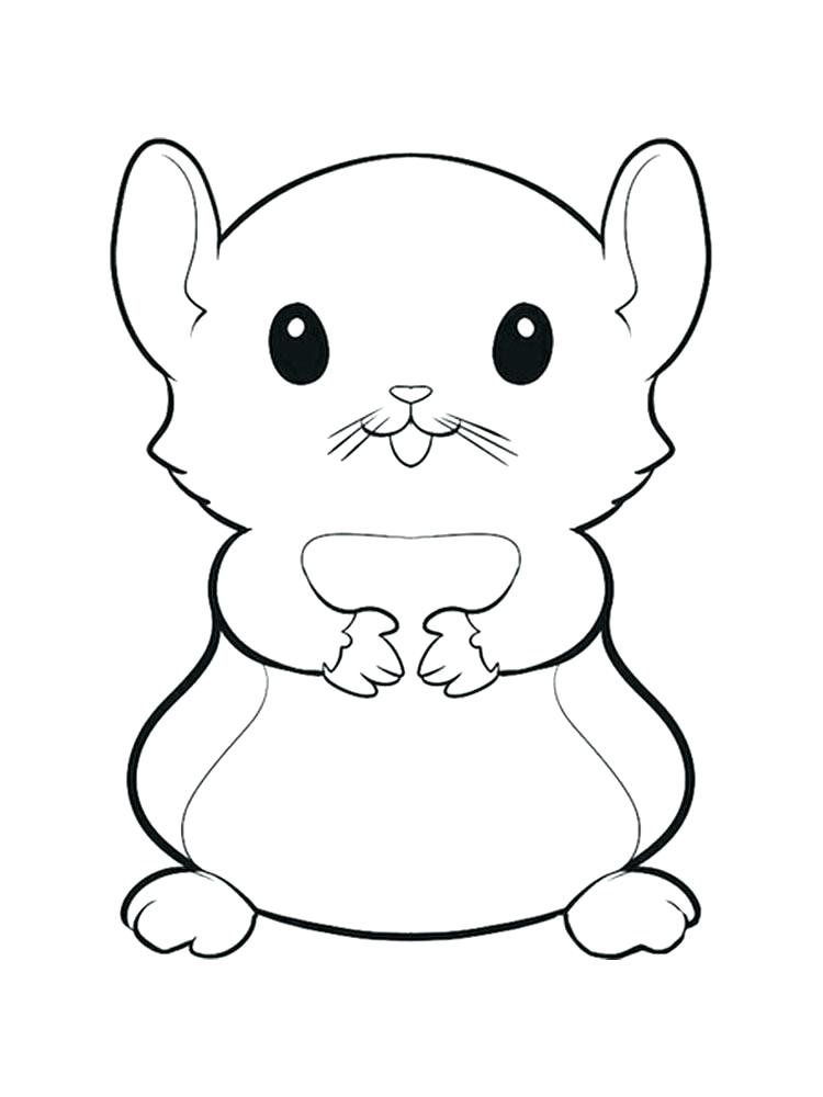 Adorable Hamster Coloring Pages