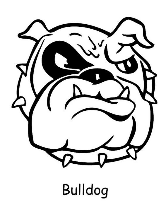 Bulldog Head Coloring Page