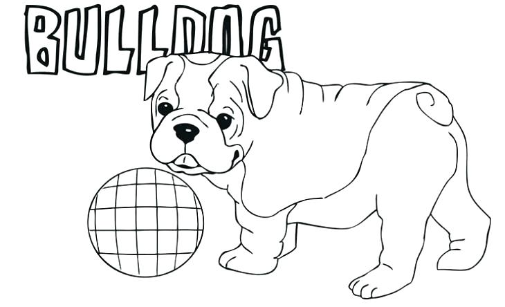 Bulldog Coloring Pages - Best Coloring Pages For Kids