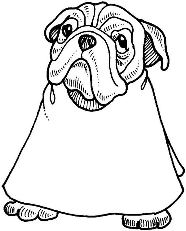 Cute Bulldog Coloring Page
