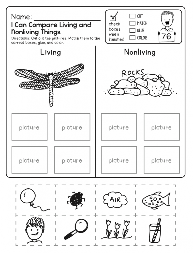 Living and Nonliving - 4th Grade Science Worksheet