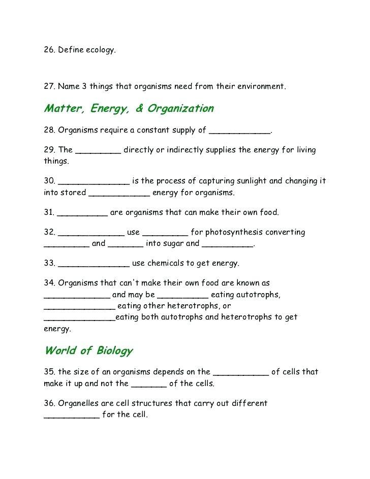 Matter - 4th Grade Science Worksheet