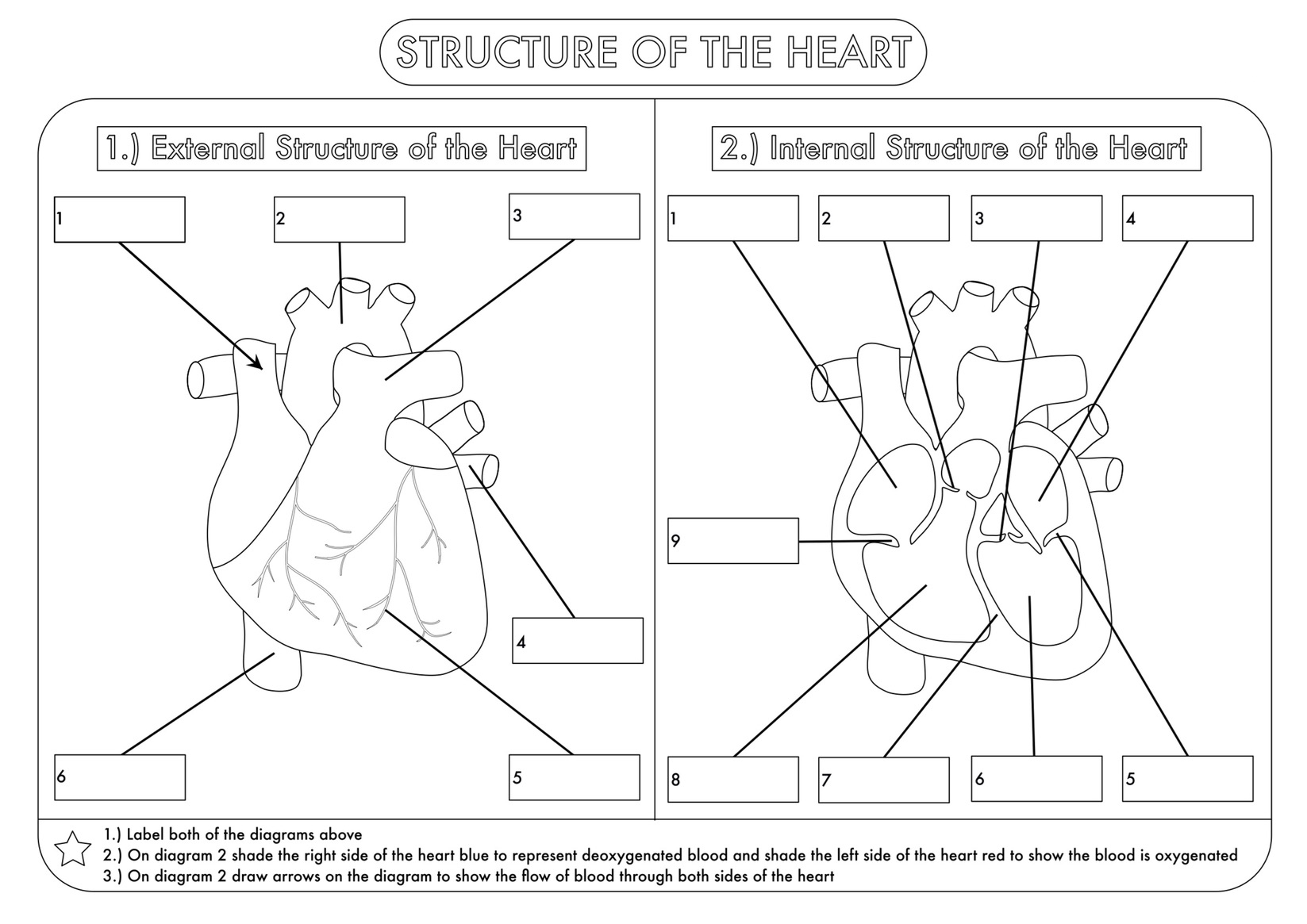 4th Grade Science Worksheets - Best Coloring Pages For Kids