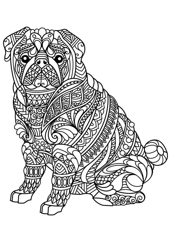 Zen Bulldog Coloring Page