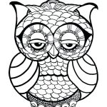 Zen Owl - Easy Coloring Pages for Adults