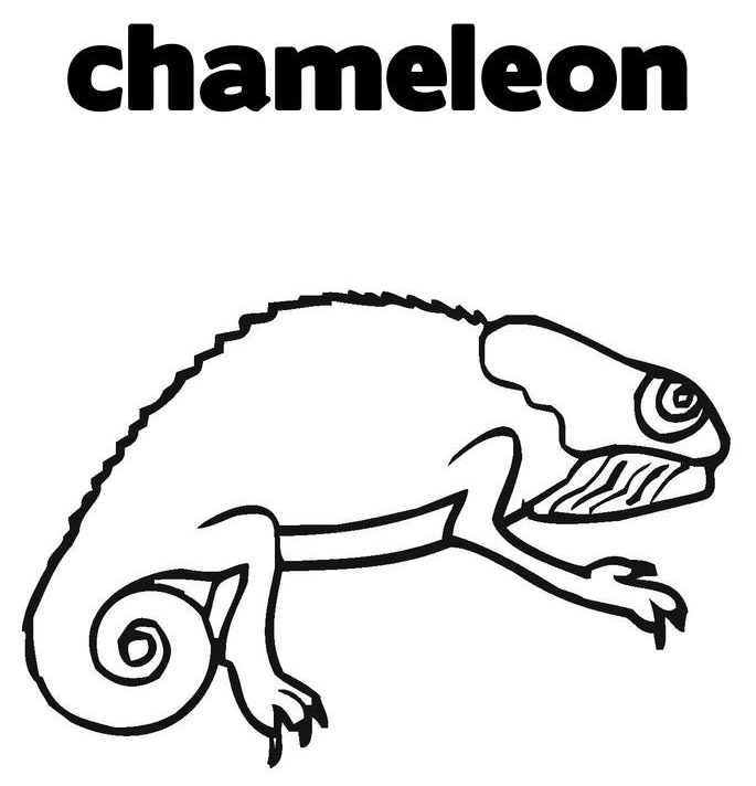 Chameleon Coloring Sheet