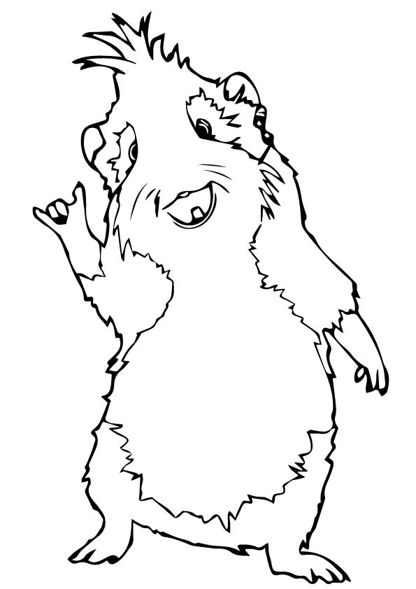 Cool Guinea Pig Coloring Page