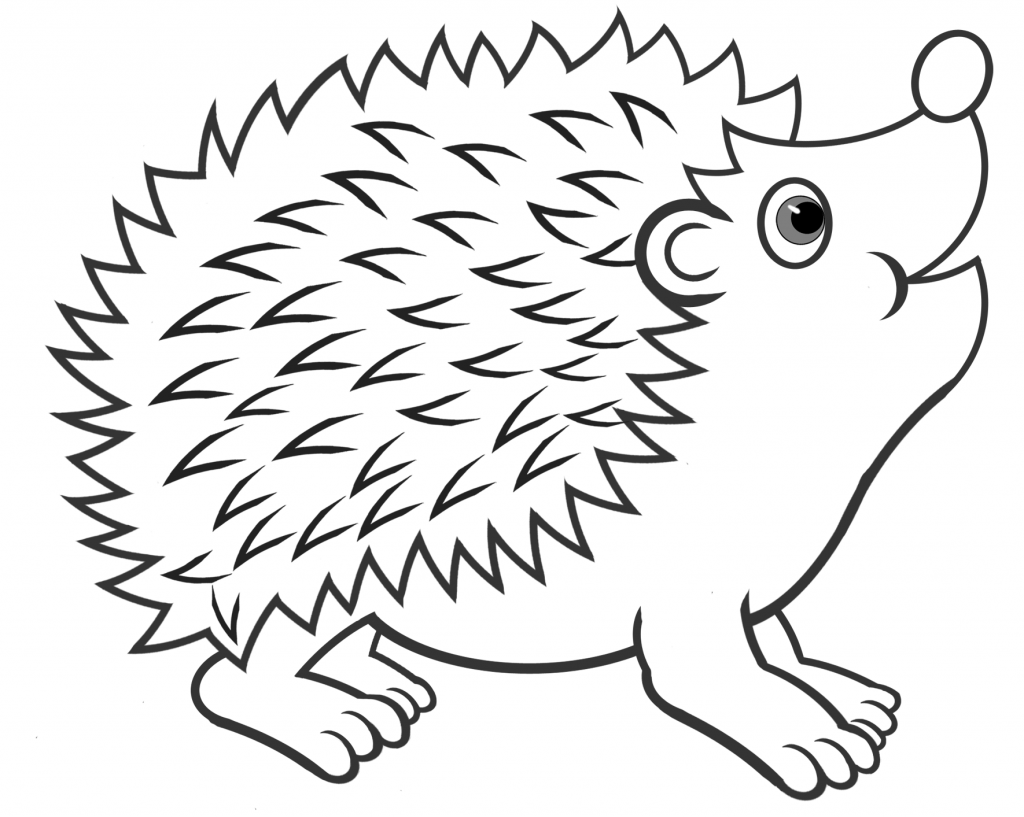 Cute Hedgehog Coloring Pages