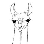 Cute Llama Face Coloring Page