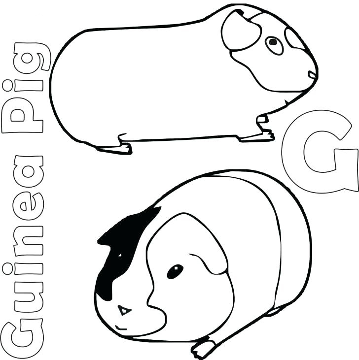 G for Guinea Pig Coloring Page