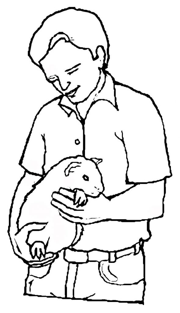 Guinea Pig Pet Coloring Page
