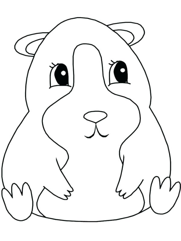 Guinea Pig Printable Coloring Page