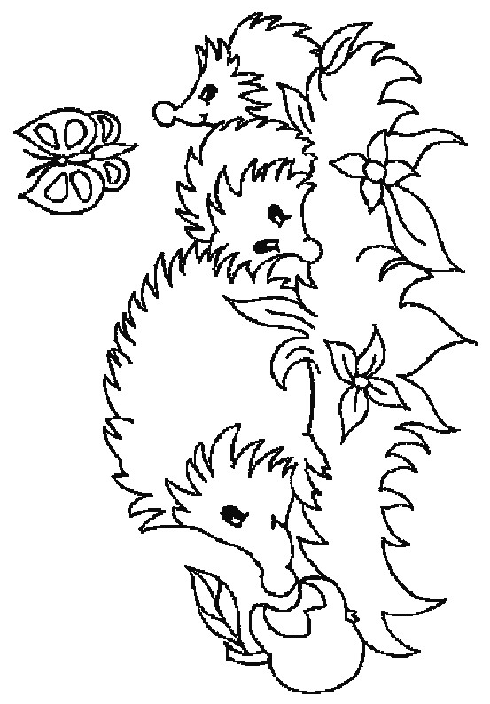 Hedgehog Nest Coloring Pages