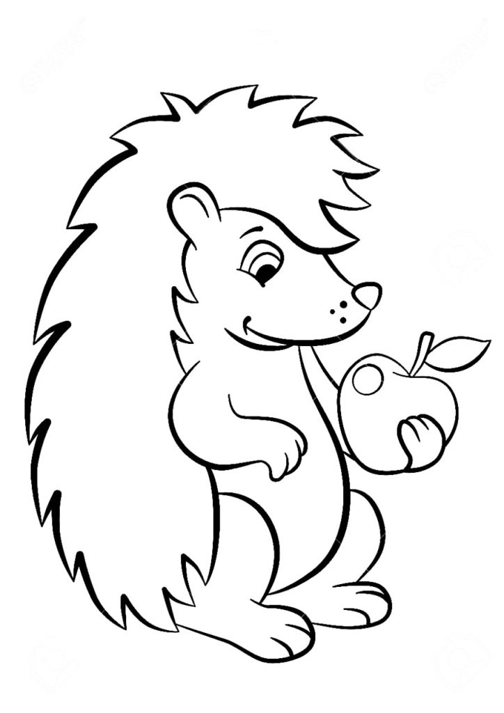 Hedgehog with Apple Coloring Pages