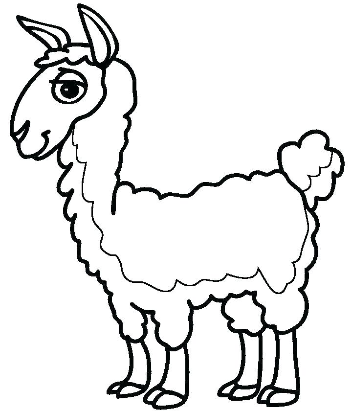 Llama Art Coloring Page