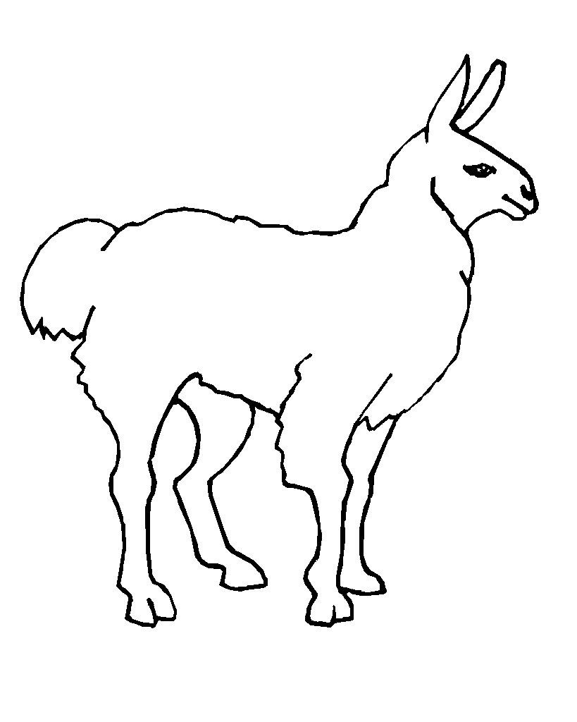 Llama Line Art Coloring Page