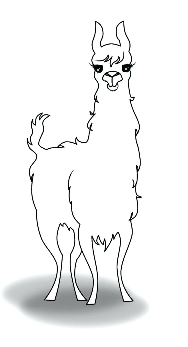 photograph relating to Llama Printable called Llama Coloring Internet pages - Suitable Coloring Internet pages For Little ones
