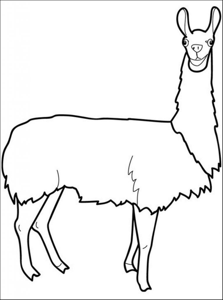 Llama Coloring Pages Best Coloring Pages For Kids