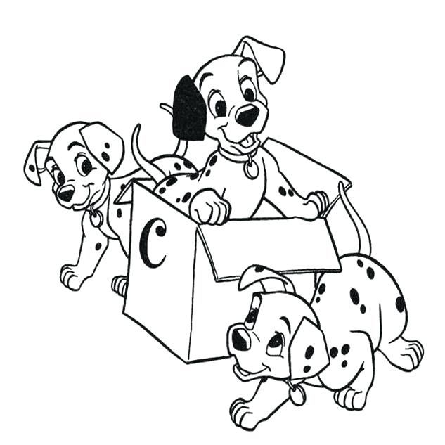 Puppies in a Box - 101 Dalmations Coloring Pages