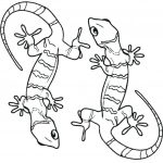 Two Cute Geckos Coloring Page