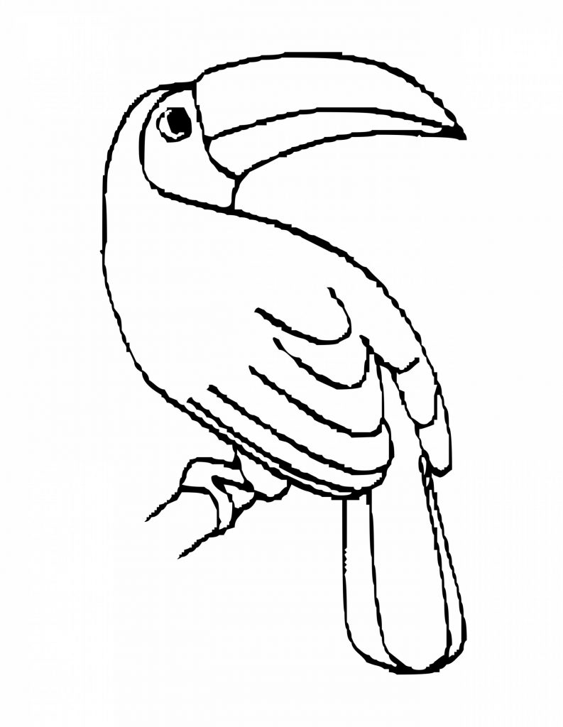 Bird Toucan Coloring Pages