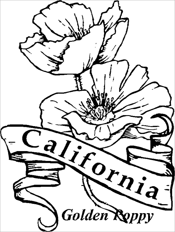California Poppy - Flower Coloring Pages